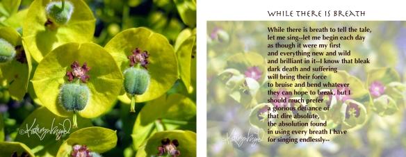 spring green flora + text