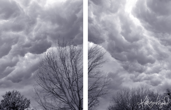 photo diptych