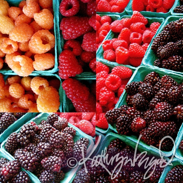 Photo: All Sorts of Berries