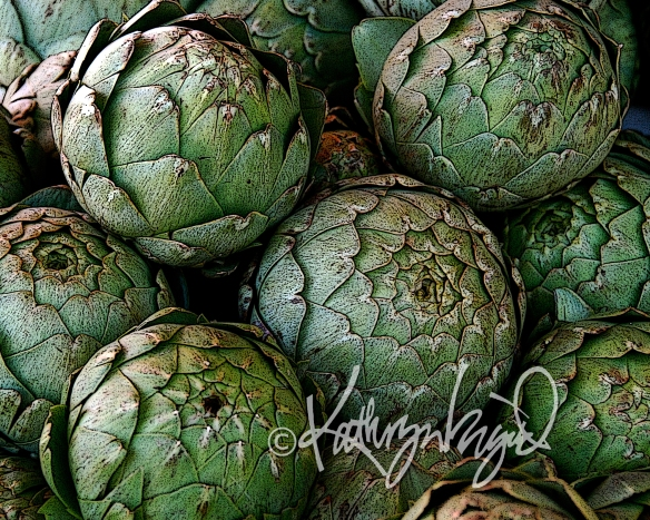 Digital illustration from a photo: Artichoke Arrangement