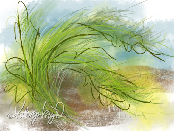 Digital illustration: Wild Grasses