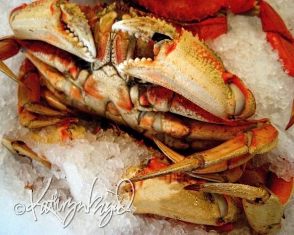 Photo: Crab, Chillin'