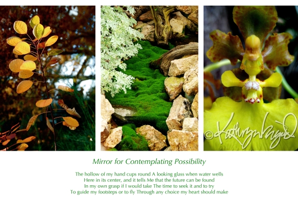 Photo montage + text: Mirror for Contemplating Possibility