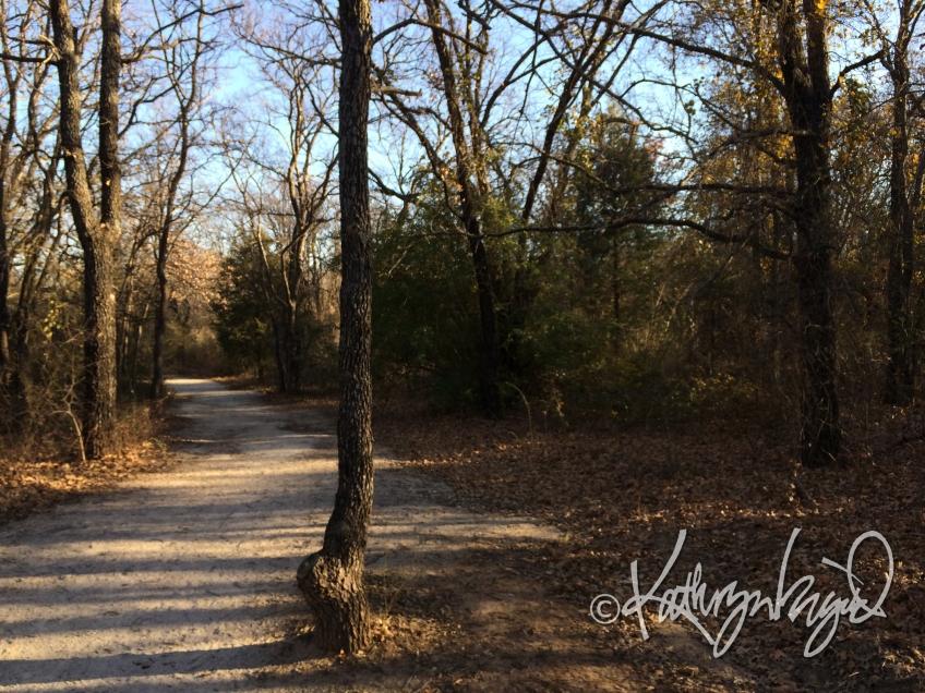 Photo: The Long Road Ahead