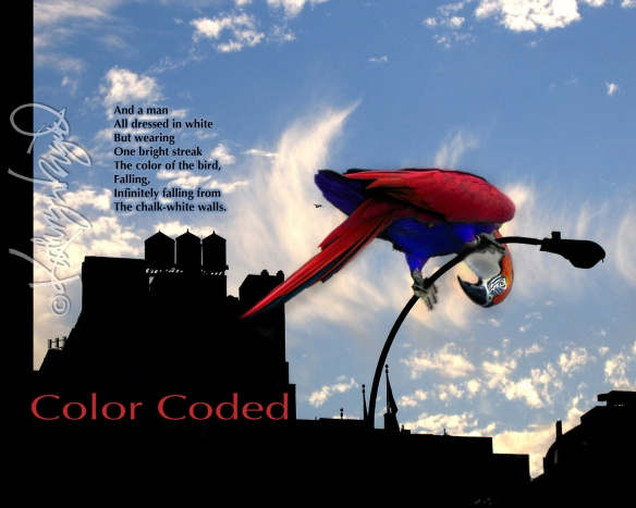 Digital illustration from photos + text: Color Coded 2
