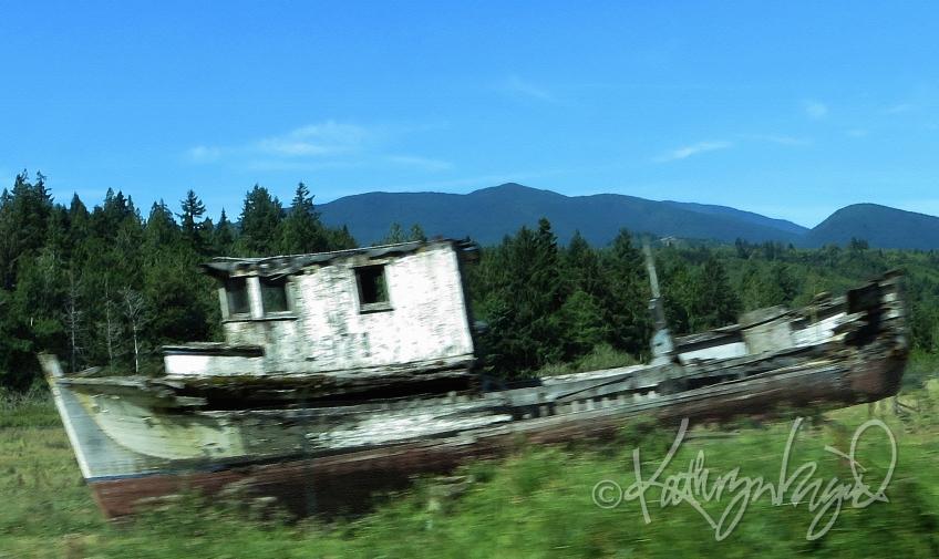 Photo: All Ashore