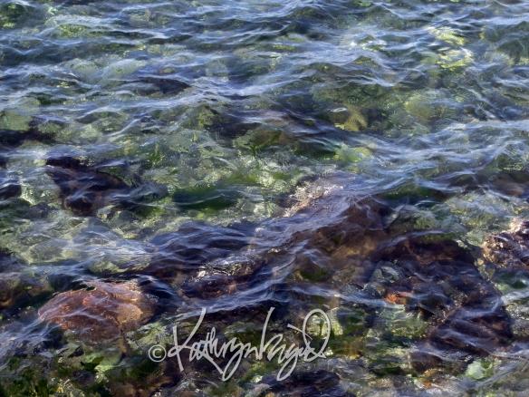 Photo: The Seasonless Sea