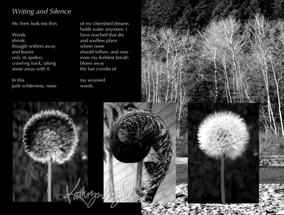 Photo montage + text: Writing & Silence