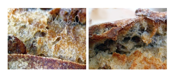 Photo montage: Peasant Bread
