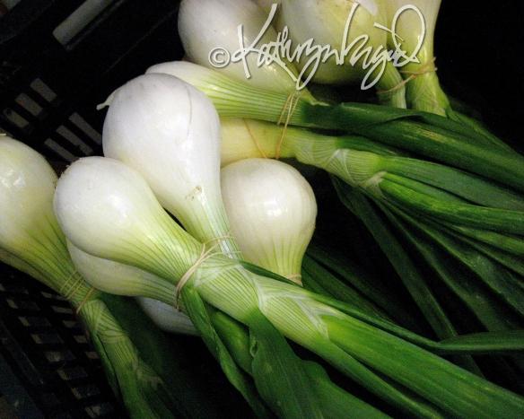 Photo: Fresh Onions
