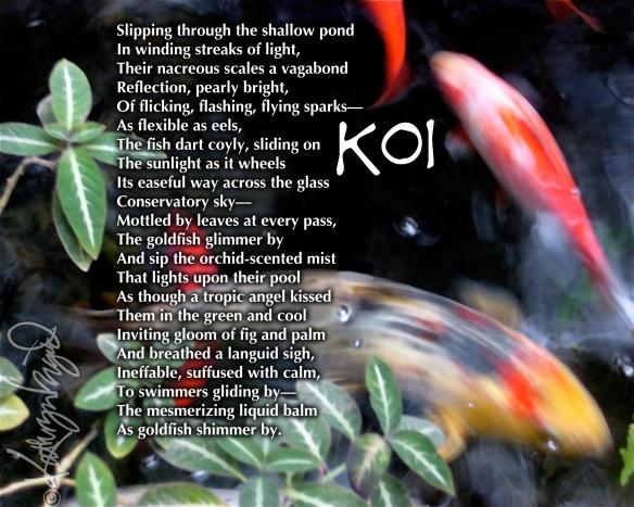 Digital illo from a photo + text: Koi