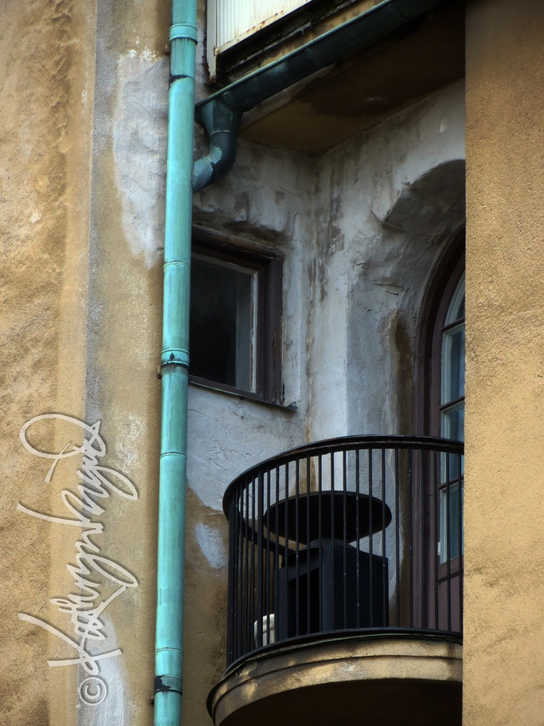 Photo: Secretive