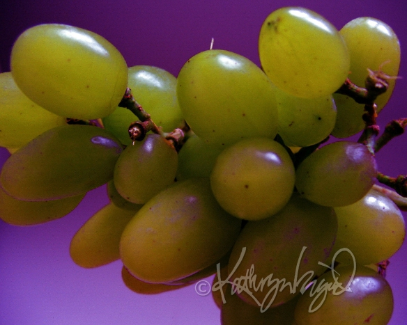 Photo: Grape Expectations