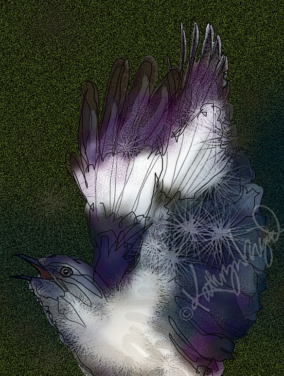 Digital illo: Mr. Mockingbird