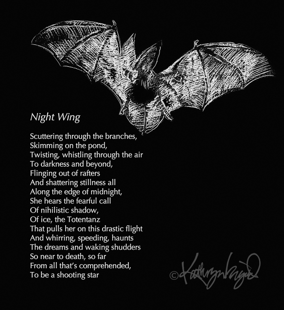 Drwg + text: Night Wing
