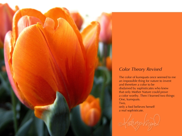 Photo + text: Color Theory Revised