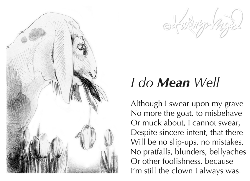 Drwg + text: I do *Mean* Well