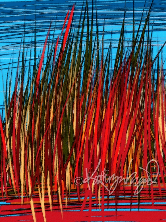 Digital illo: Japanese Blood Grass