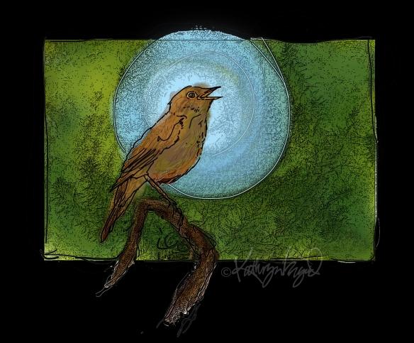 Digital illo: Nightingale