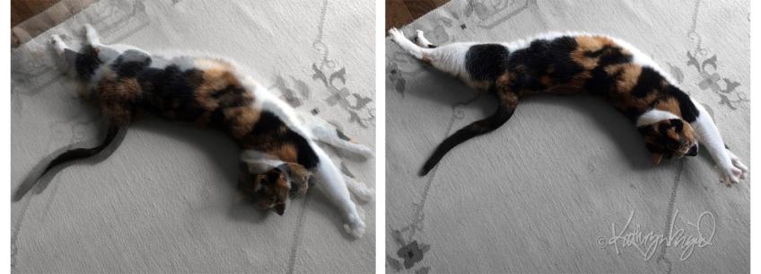 Photomontage: Action Figure