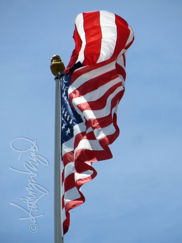 Photo: Flag-waving